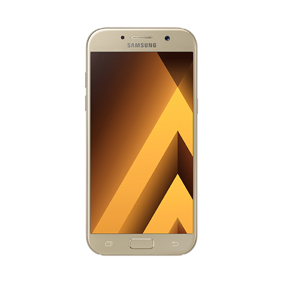 01_a5_front_gold_standard_online_l